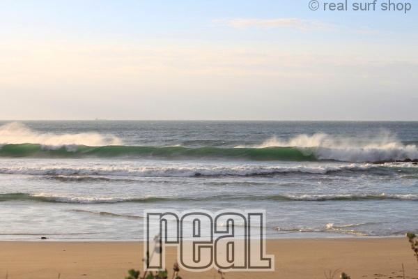 波はあるけど、ワイドなダンパー。