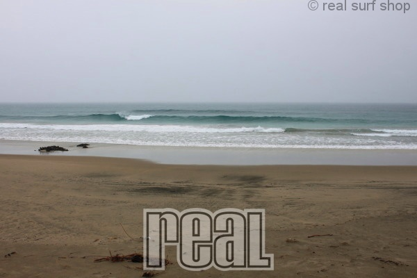 潮がワイドなダンパー中心。