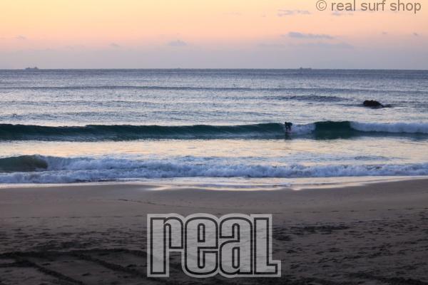 潮の上げ込みで波数は増えてます!