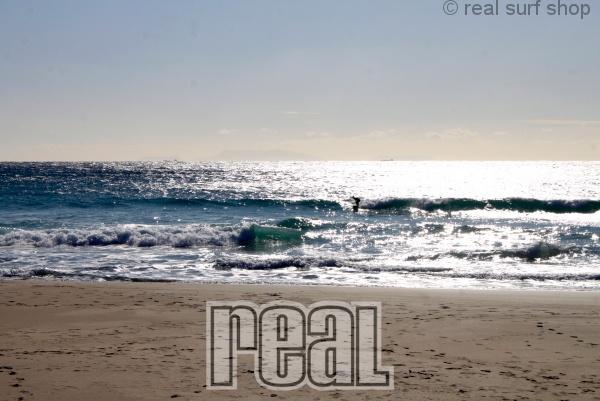 ワイドな波はサイズダウン。